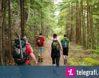 Doktorët shpjegojnë se si hiking-u e ndryshon trurin tonë