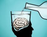 Si ndikon alkooli në trurin tuaj?