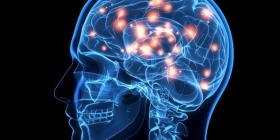Çfarë ndodh me trurin e njeriut para se të vdesë
