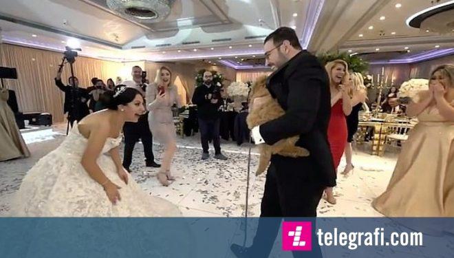 Befasia më e madhe për nusen, ishte një qen që ia dhuroi bashkëshorti gjatë dasmës (Video)
