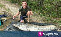 Zuri një peshk më të gjatë se vet ai, me një shkop që peshkohen peshqit e vegjël (Foto)