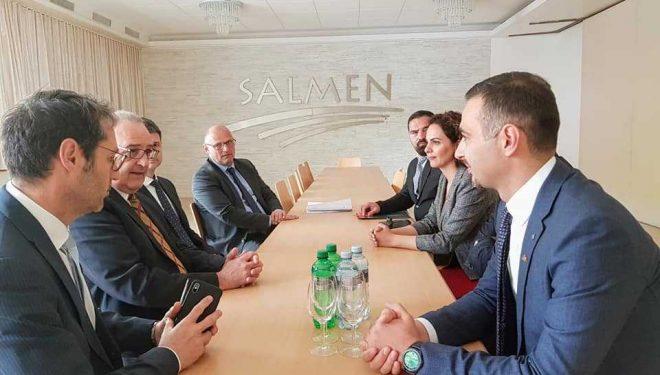 Lluka kërkon përkrahje nga Zvicra për sektorin energjetik