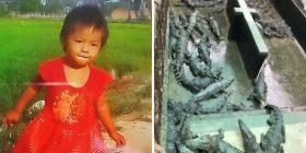 Krokodilët e hanë për së gjalli vajzën dyvjeçare në Kamboxhia