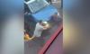 Momenti i tmerrshëm kur një grua shtypet mes dy makinave (Video)