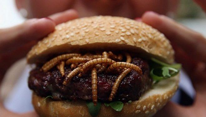 Hamburger me krimba, punonjësit: Janë më të shijshëm se mishi i viçit