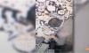 Publikohen pamjet e një kryebashkiaku në Shqipëri duke konsumuar kokainë në lokal