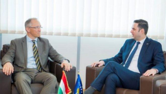 Abdixhku në takim me ambasadorin e Hungarisë