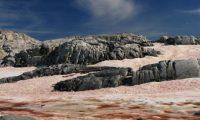 Në Antarktik bora dhe akulli bëhen të kuqe