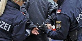 Rrahje masive e 50 anëtarëve të një familje serbe në Vjenë