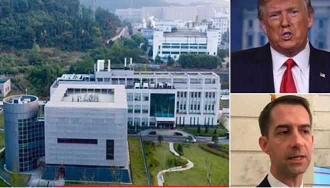 Ekspertët japin verdiktin nëse ushtria kineze apo amerikane krijoi COVID-19 si bio-armë