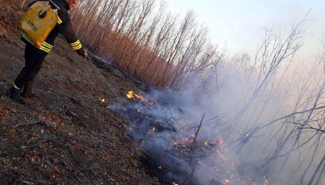 Kryetari i Skenderajt, Jashari: Ja kush po i vënë zjarrin pyjeve tona
