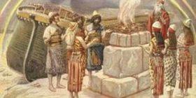 Plisi – simbol i të zgjedhurve të Zotit