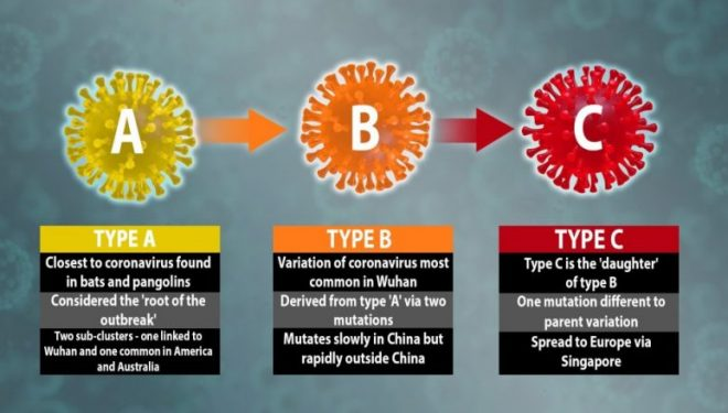 Studiuesit: Kemi zbuluar se ka tri variante të coronavirusit të ri, të përhapur në të gjithë botën