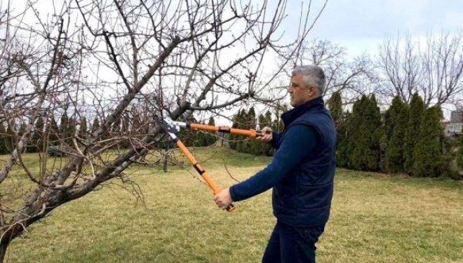Thaçi: Në politikë nuk jam nga ata që krasitin, por nga ata që mbjellin