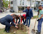 Ismajli: Ta ruajmë ambientin dhe pronën publike sikur oborrin e shtëpisë