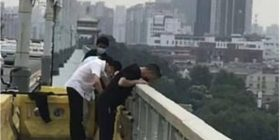 Pamje prekëse/ Pronari u vetëvra, qeni besnik e pret për katër ditë mbi urë