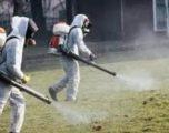 Vazhdon dezinsektimi i zonave të dyshuara për rriqra në Malishevë