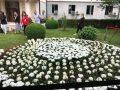 Janë mbjellur 1.133 lule si kujtim për fëmijët e vrarë gjatë luftës