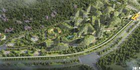 Arkitekti që dëshiron të ndërtojë qytetin me një milionë pemë