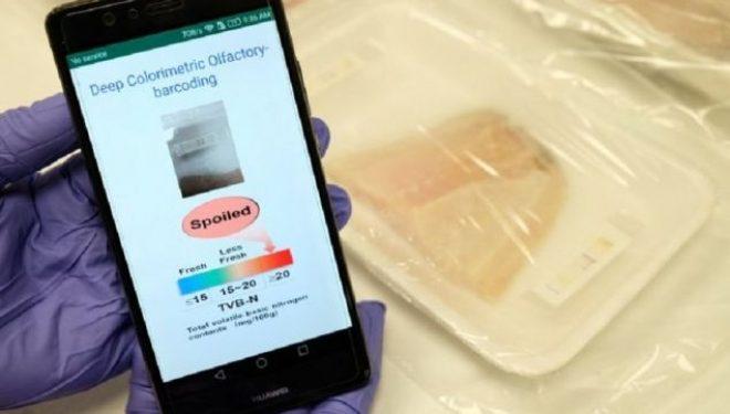 Shkencëtarët në Singapor zhvillojnë 'hundën' elektronike për nuhatjen e mishit të prishur