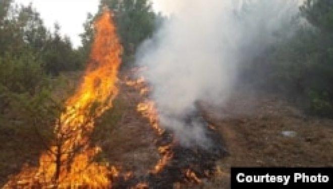 Pandemia rralloi rastet e zjarreve në Maqedoninë e V.