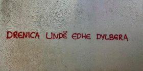 """Drencia lind edhe dylbera"""", Drenica mbushet me grafite"""